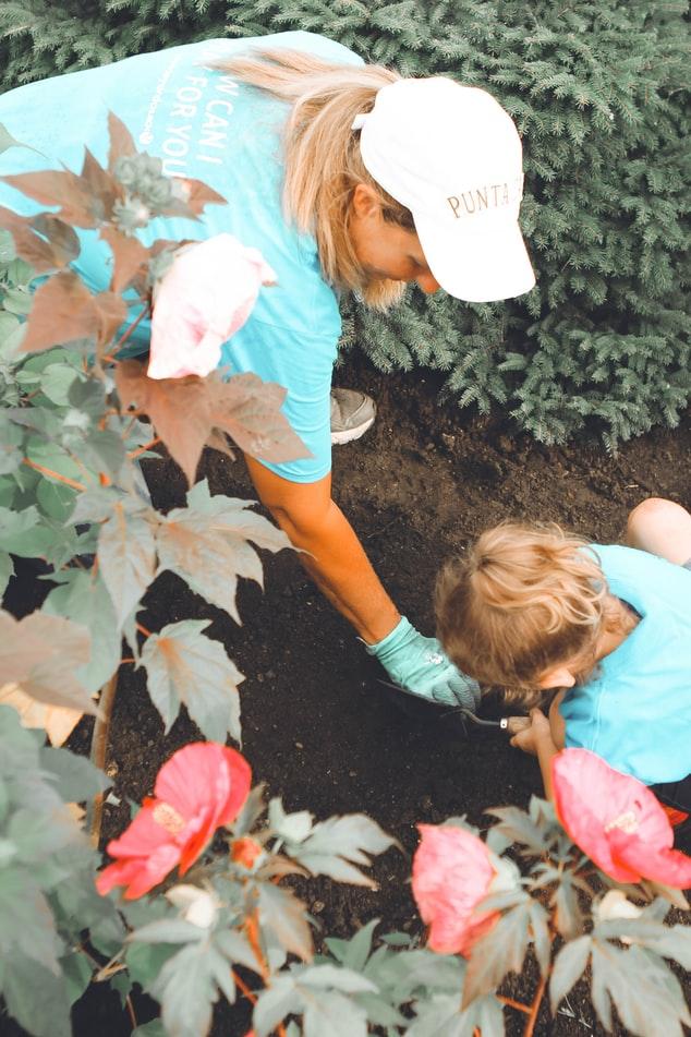 Jardinage en terrasse